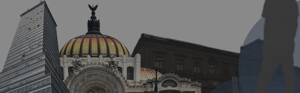 The best Tours in Mexico City!