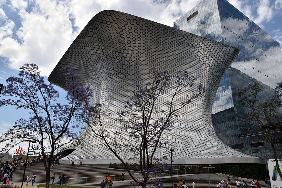 Guided tour Museo Soumaya