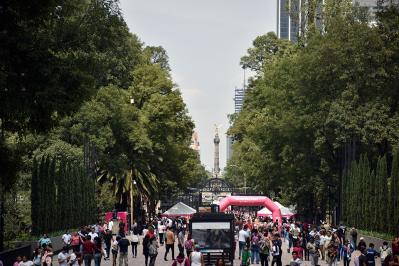 Museums in Chapultepec primera sección in Mexico City